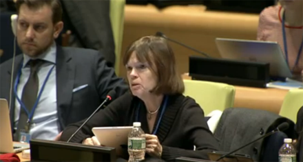 IFLA President-elect Donna Scheeder speaking at the 5th meeting, Post-2015 Intergovernmental Negotiations (Declaration Session) - General Assembly, Informal meeting